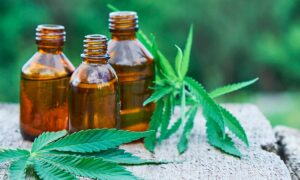 CBD and Its Use for the Health